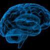 Atelier sur le bien-être et la santé mentale pour aînés: La démence