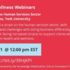 Webinar: Mental Health in the Human Services Sector
