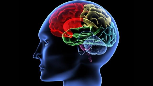 Premiers soins en santé mentale:  soutenir les jeunes (virtuelle) Partie 2
